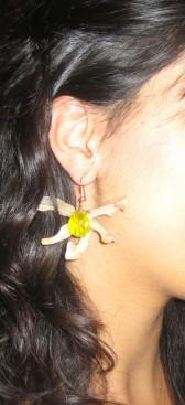 Asterias Earing